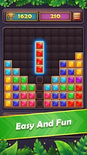 Block Puzzle Gem: Jewel Blast 2020 10