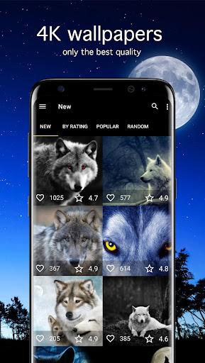 Wolf Wallpapers 4K 5.1.0 screenshots 1