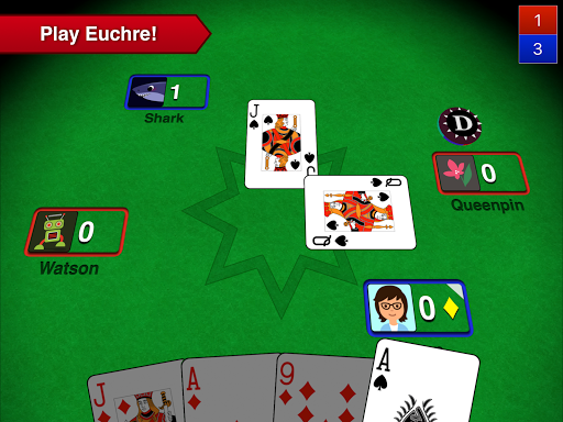 Euchre 3D 5.15 screenshots 6