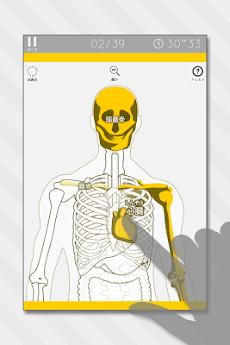 あそんでまなべる 人体模型パズルのおすすめ画像1
