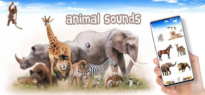 Animal Sounds 1