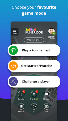 Fun Bridge 4.5.1 screenshots 4
