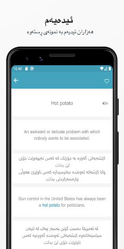 Rebin Dictionary Plus - Kurdish 4.1 Screenshots 5
