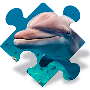 Free Dolphin Jigsaw Puzzles