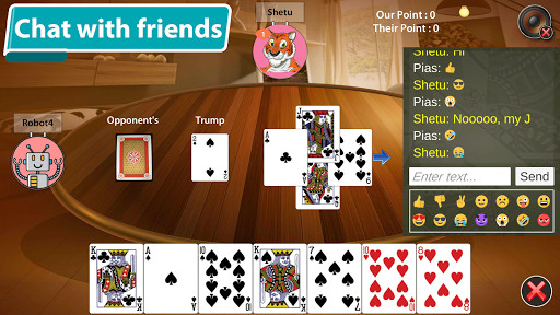 29 Card Game  Screenshots 15