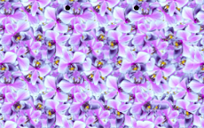 3D視力回復のおすすめ画像2