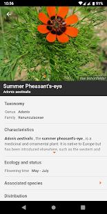 Flora Incognita - automated plant identification 2.9.9 Screenshots 5