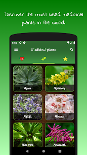 myRemedy: Medicinal plants and For Pc – Windows 10/8/7/mac -free Download 1