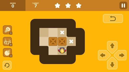 Push Maze Puzzle 1