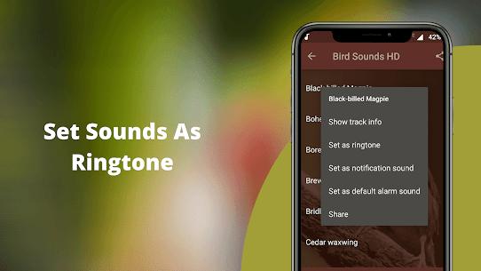 Bird Sounds – Nature Bird Calls & Ringtones 3