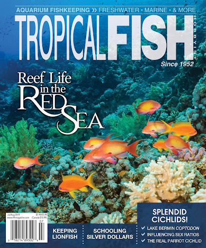 Tropical Fish Hobbyist Magazine For PC Windows (7, 8, 10, 10X) & Mac Computer Image Number- 5