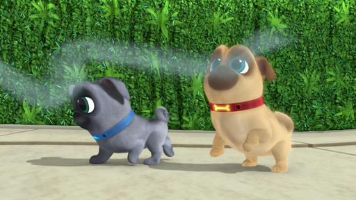 Puppy dog Run World PaLs apktreat screenshots 1