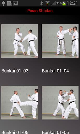 karate shito-ryu 2 screenshot 2