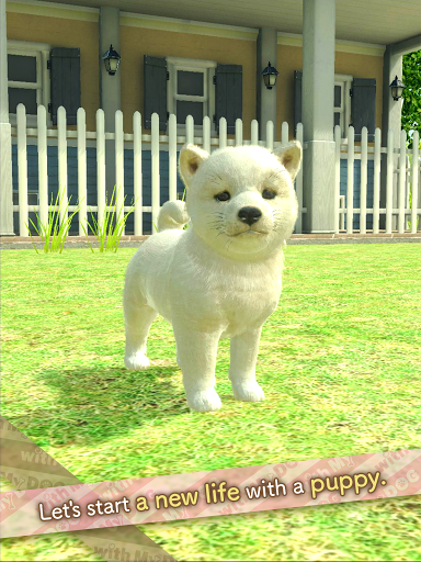 with My DOG  screenshots 17