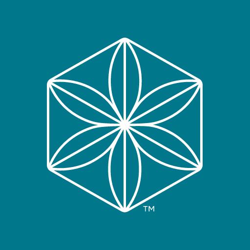 IsaLife icon
