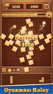 Wood Block Puzzle – Ücretsiz Klasik Zeka Oyunu Full Apk İndir 3