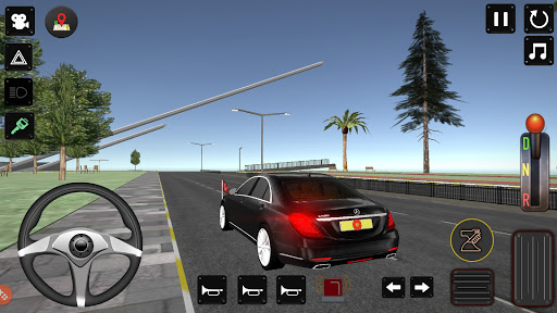 President Police Protection Game 12 screenshots 1