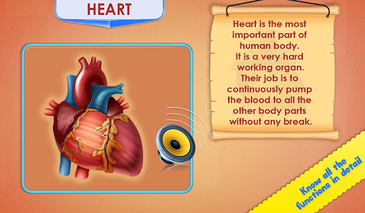 Human Body Parts - Preschool Kids Learning  screenshots 3