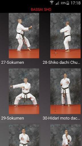 karate shito-ryu 8 screenshot 1