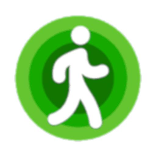 CountSteps icon