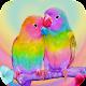 Bird Wallpaper HD Download on Windows