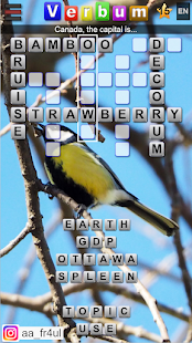 Verbum - Crossword free offline multi language Screenshot