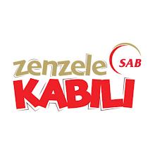 SAB Zenzele icon