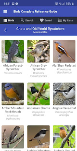 Birds Complete Reference Guide