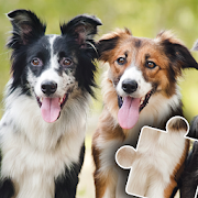 Dogs & Cats Puzzles for kids & toddlers