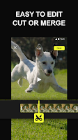 screenshot of Efectum – Video Editor and Maker with Slow Motion