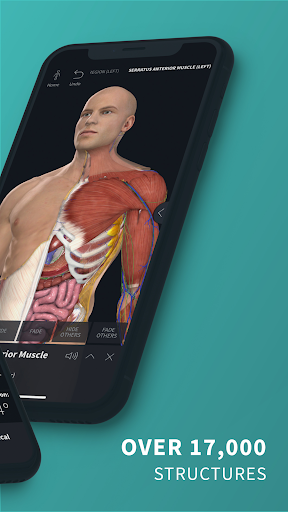 Complete Anatomy u201821 - 3D Human Body Atlas 6.4.0 Screenshots 2