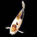 MyAquarium Fish tank manager