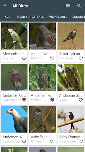Indian Birds android2mod screenshots 4