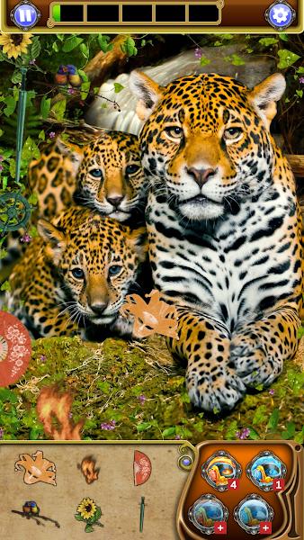 Hidden Object Quest: Animal World Adventure