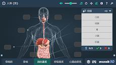人体 (男)インタラクティブな教育用3Dのおすすめ画像5