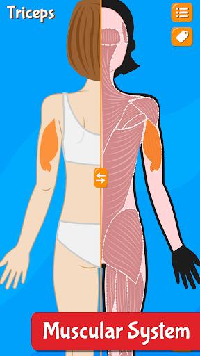 Anatomix - Human Anatomy screenshots 5