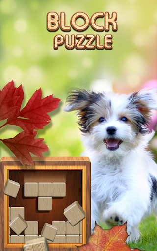 Block Puzzle Wood 1010: Classic Free puzzledom 3.05 screenshots 1