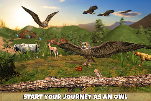 Wild Owl Bird Family Survival: Bird Simulator 3.0 screenshots 1