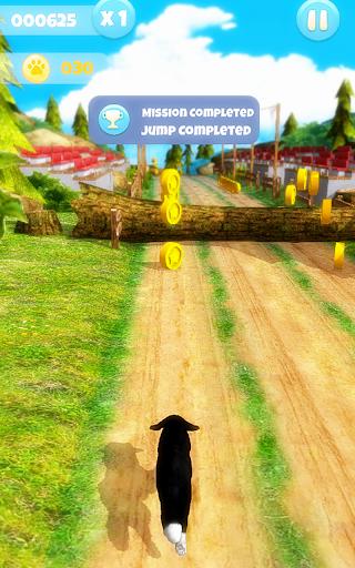 Dog Run 1.1.9 screenshots 11
