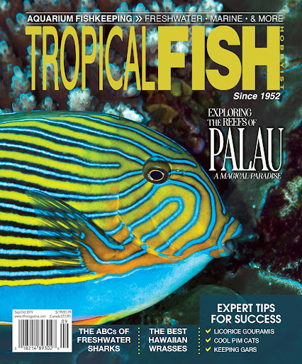 Tropical Fish Hobbyist Magazine For PC Windows (7, 8, 10, 10X) & Mac Computer Image Number- 14