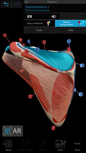 Human Anatomy Atlas 2021:Complete 3D Human Body screen 2
