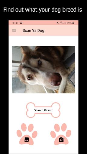 ud83dudc36 Scan Ya Dog - Dog Breed Identification ud83dudc36  screenshots 2