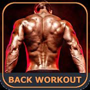 Back Workout Exercises