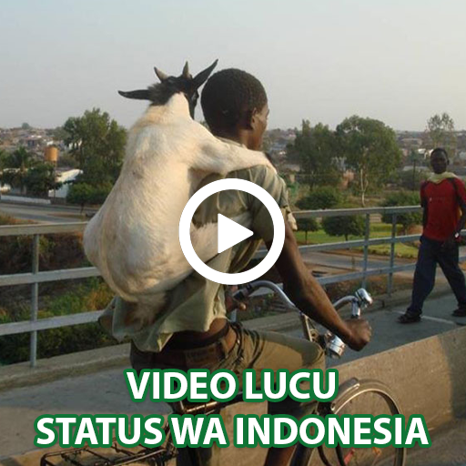 Video Lucu Status Wa Aplikasi Di Google Play