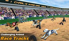 本物の犬のレースゲーム レーシングドッグシミュレーターのおすすめ画像2