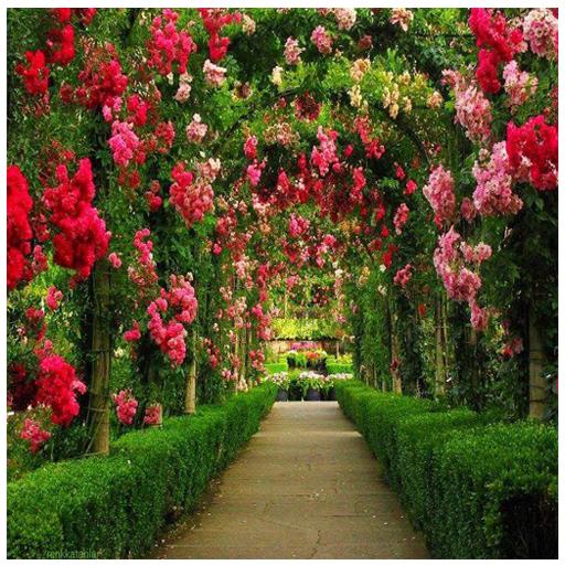 Baixar Garden photos frames para Android