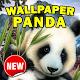 Wallpaper Panda Lucu Download for PC Windows 10/8/7