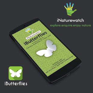 iButterflies