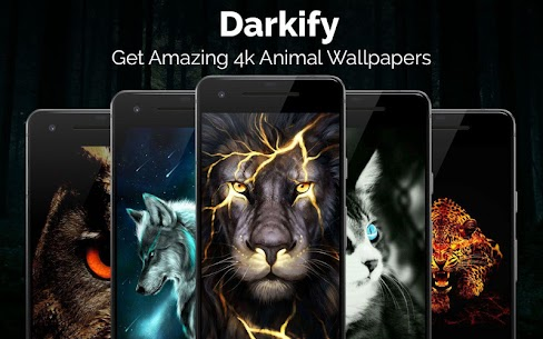 Black Wallpaper, AMOLED, Dark Background: Darkify MOD APK V10.1 – (VIP Unlocked) 3