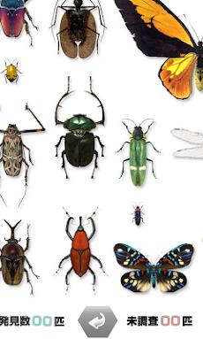 世界の昆虫採集のおすすめ画像4